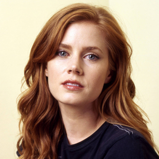 actor-amy-adams.jpg?2013